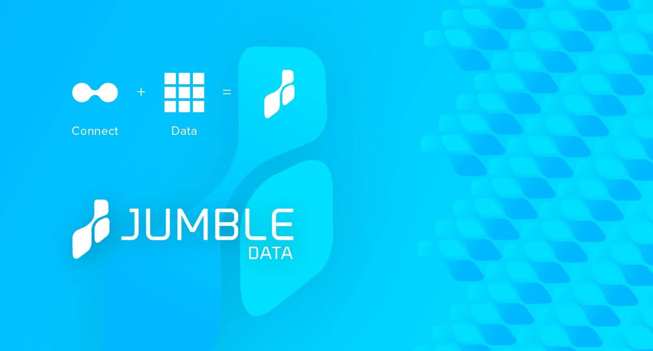 Jumble Data gallery image3